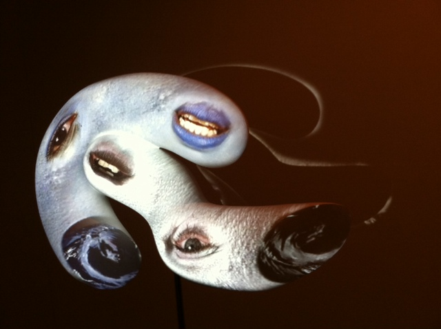 Tony Oursler's sculpture at the Honolulu Museum